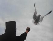 monah i ptica